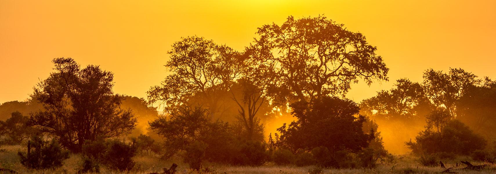 tsavo-ovest-tramonto