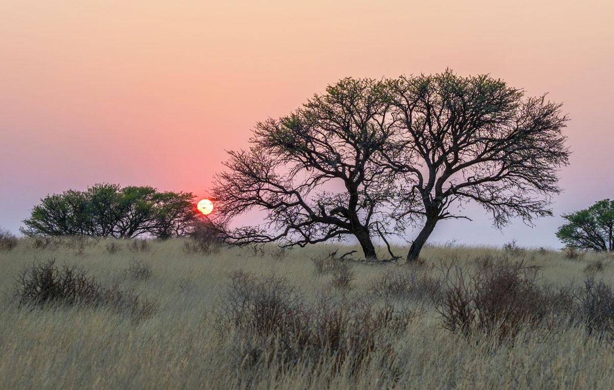 kalahari-adventure-tramonto