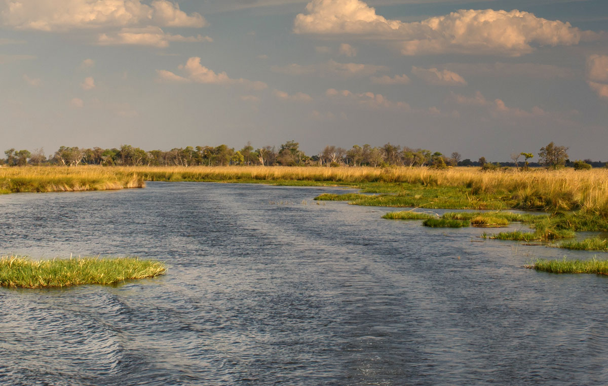 okavango-experience-okavango-delta