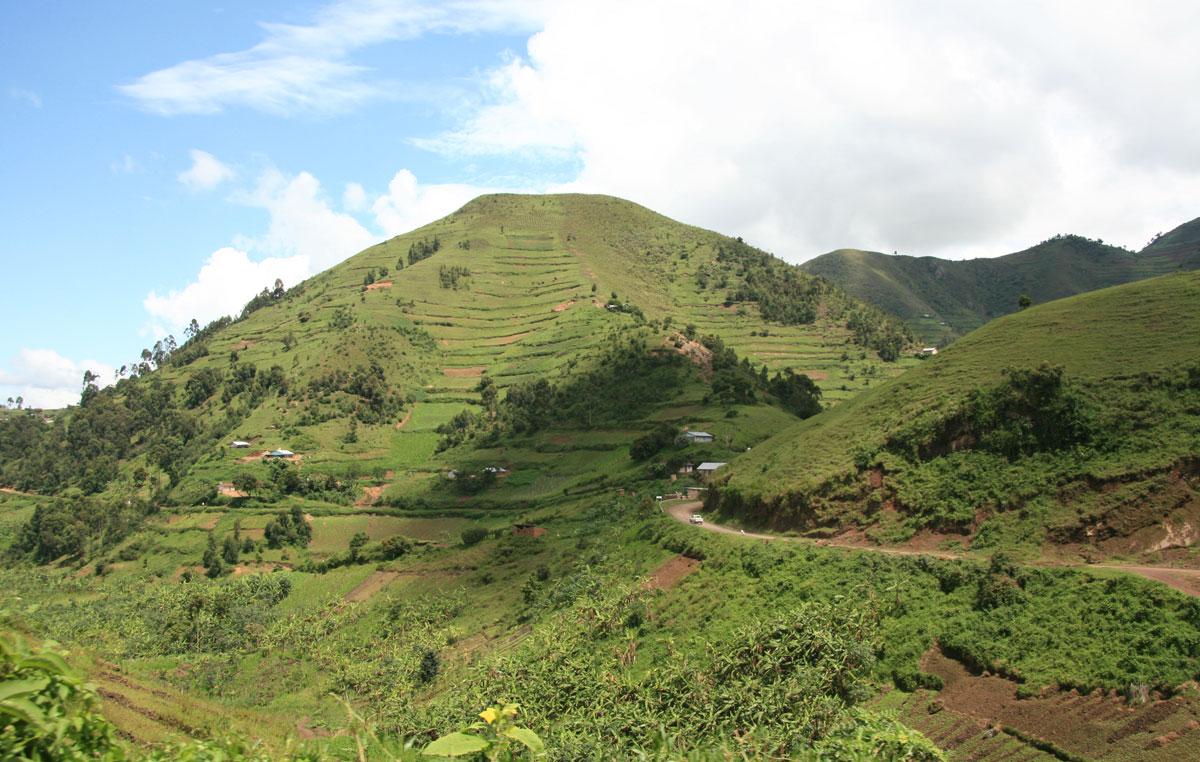 panorama-uganda-campi-di-riso